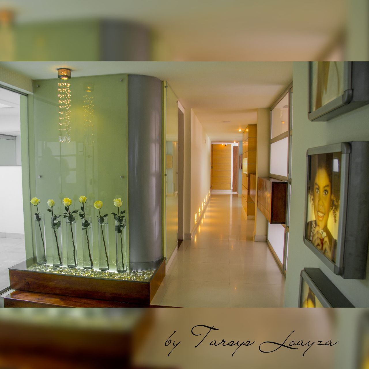 Sonrisa Perfecta Dental - Tarsys Loayza Roys Facility